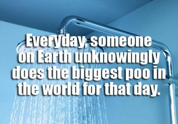 Text - Everyday someone on Earth unknowingly does the biggest poo in the world for that day.