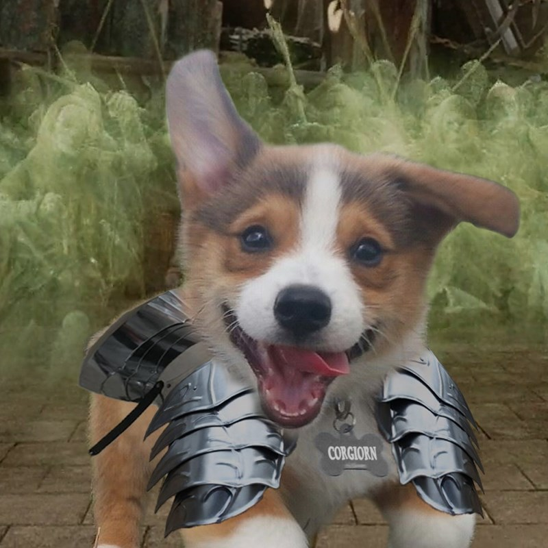 Dog - CORGIORN