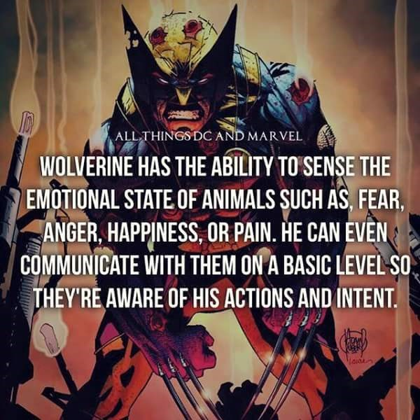 Fictional character - ALL THINGS DC AND MARVEL WOLVERINE HAS THE ABILITY TO SENSE THE EMOTIONAL STATE OF ANIMALS SUCH AS, FEAR, ANGER, HAPPINESS, OR PAIN. HE CAN EVEN COMMUNICATE WITH THEM ON A BASIC LEVEL SO THEY'RE AWARE OF HIS ACTIONS AND INTENT