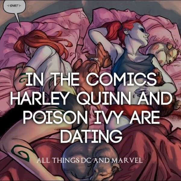 Text - SNRT GIN THE COMICS HARLEY QUINN AND POISON IVY ARE DATING ALL THINGS DCAND MARVEL