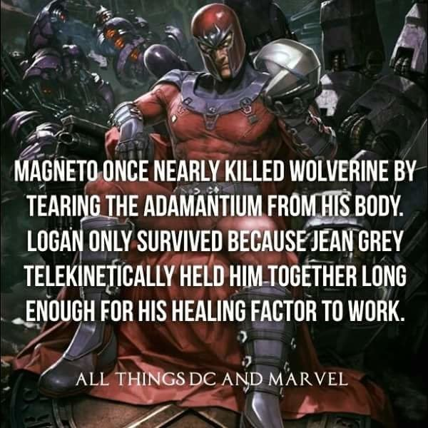 Fictional character - MAGNETO ONCE NEARLY KILLED WOLVERINE BY TEARING THE ADAMANTIUM FROMHIS BODÝ. LOGAN ONLY SURVIVED BECAUSE JEAN GREY TELEKINETICALLY HELD HIM TOGETHER LONG ENOUGH FOR HIS HEALING FACTOR TO WORK ALL THINGS DCAND MARVEL