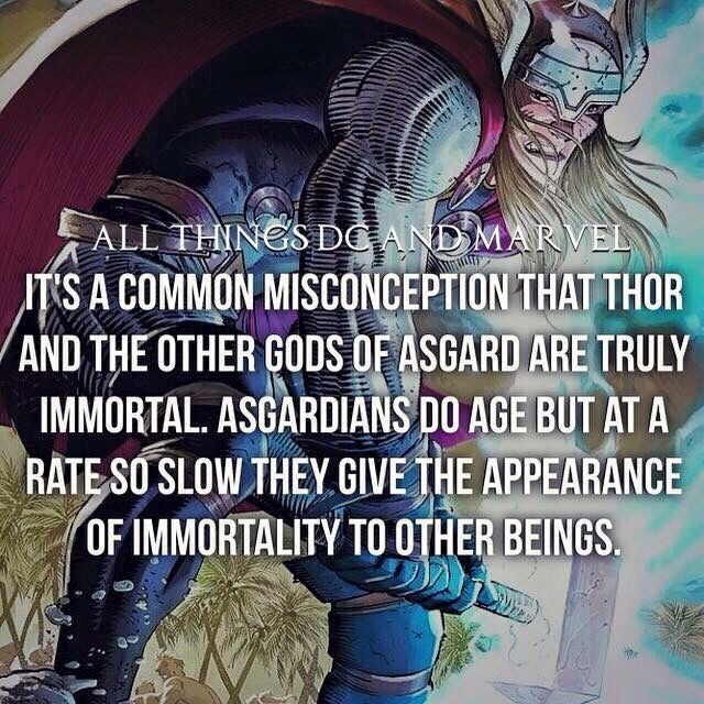 Cartoon - ALL THINGSDC AND MARVEL ITS A COMMON MISCONCEPTION THAT THOR AND THE OTHER GODS OF ASGARD ARE TRULY IMMORTAL. ASGARDIANS DO AGE BUT AT A RATE SO SLOW THEY GIVE THE APPEARANCE OF IMMORTALITY TO OTHER BEINGS.