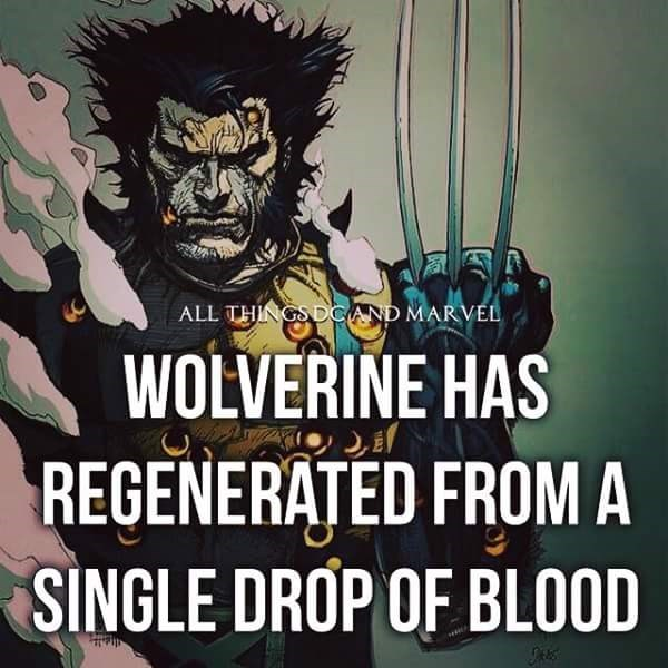Cartoon - ALL THINGSDCAND MARVEL WOLVERINE HAS REGENERATED FROM A SINGLE DROP OF BLOOD