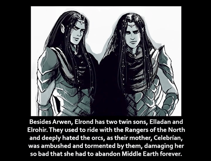 Text - Besides Arwen, Elrond has two twin sons, Elladan and Elrohir. They used to ride with the Rangers of the North and deeply hated the orcs, as their mother, Celebrían, was ambushed and tormented by them, damaging her so bad that she had to abandon Middle Earth forever.