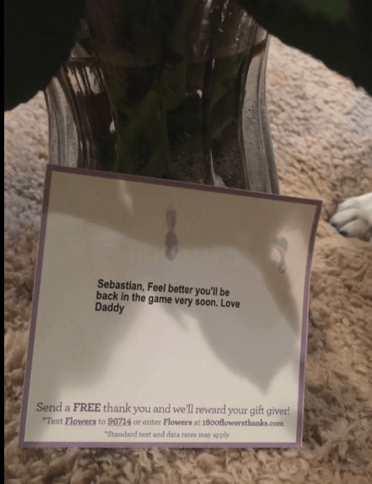 """Text - Sebastian, Feel better you'll be back in the game very soon. Love Daddy Send a FREE thank you and well reward your gift giver! Text Flowers to 96714 or enter Flowers at 180oflowersthanks.com """"Standard text and data rates may apply"""