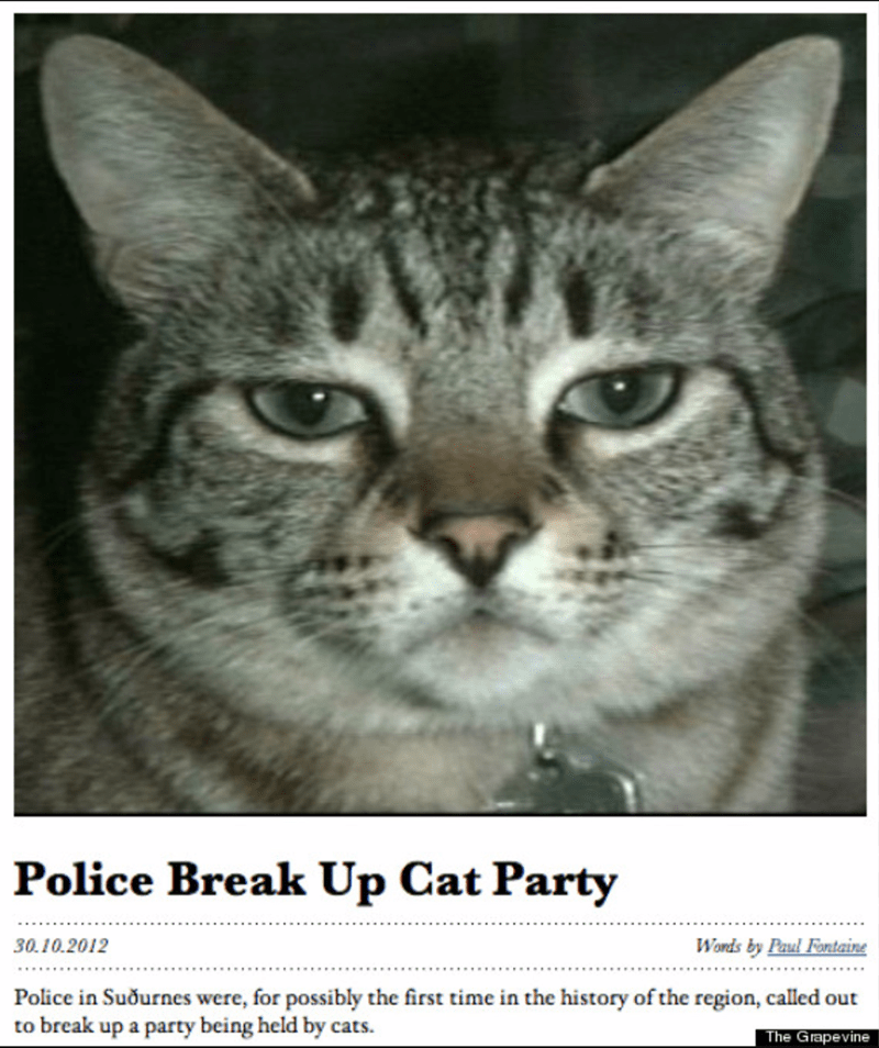 Cat - Police Break Up Cat Party Words by Paul Forntaine 30.10.2012 Police in Suournes were, for possibly the first time in the history of the region, called out to break up a party being held by cats. The Grapevine
