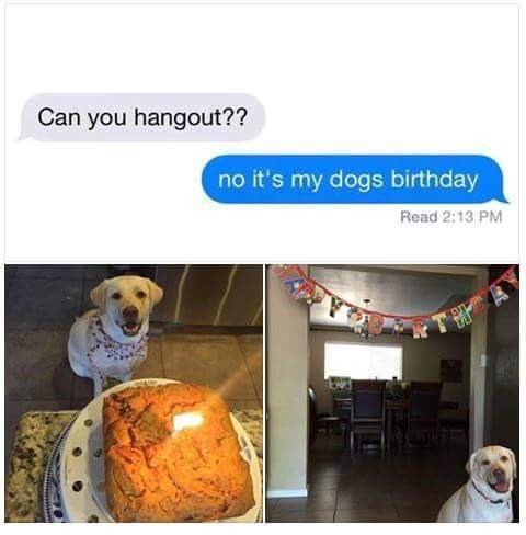 Canidae - Can you hangout?? no it's my dogs birthday Read 2:13 PM