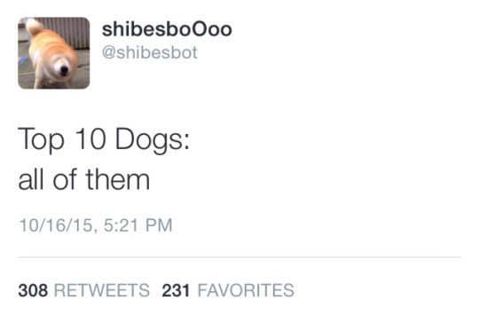 Text - shibesboOoo @shibesbot Top 10 Dogs: all of them 10/16/15, 5:21 PM 308 RETWEETS 231 FAVORITES
