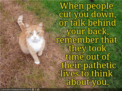 cat time people talk behind back caption pathetic - 9007344640
