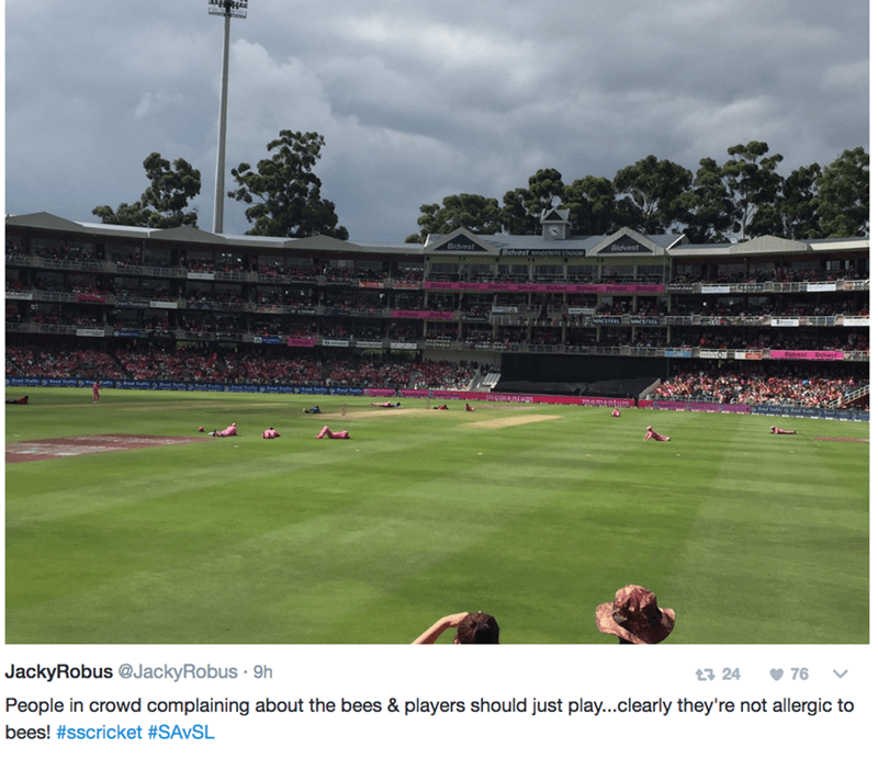 Sport venue - Bidvest Bidvest Bidvest SAMACSTEEL ementum JackyRobus @JackyRobus 9h 76 t 24 People in crowd complaining about the bees & players should just play...clearly they're not allergic to bees! #sscricket #SAVSL