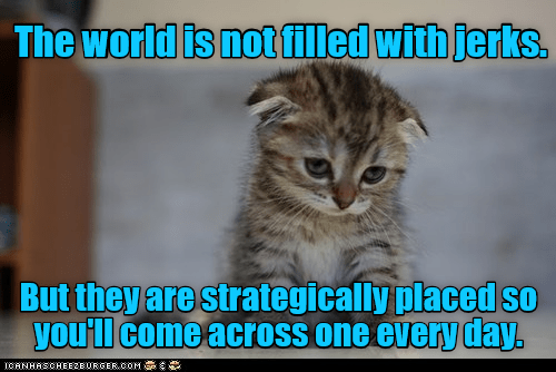 world filled strategically placed not jerks Caturday caption - 9007550976