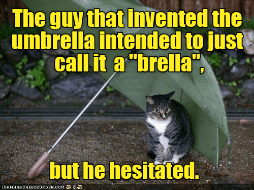 umbrella cat brella guy hesitated caption invented