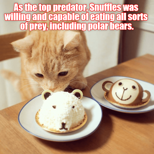 cat top polar bears Predator eating caption snuffles - 9007564288
