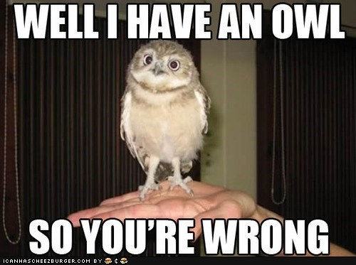 Owl - WELLI HAVE AN OWL SO YOU'RE WRONG ICANHASCHEEZBURGER.cOM BY