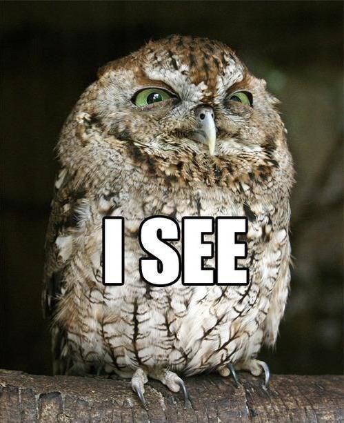 Owl - ISEE