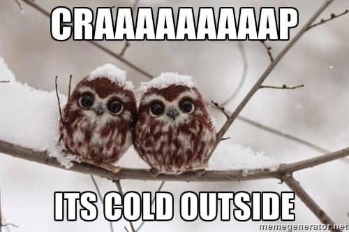 Owl - CRAAAAAAAAAP ITS COLD OUTSIDE memegenerator.net
