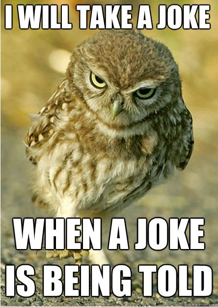 Owl - IWILL TAKE AJOKE WHEN A JOKE IS BEING TOLD auickmeme.comt