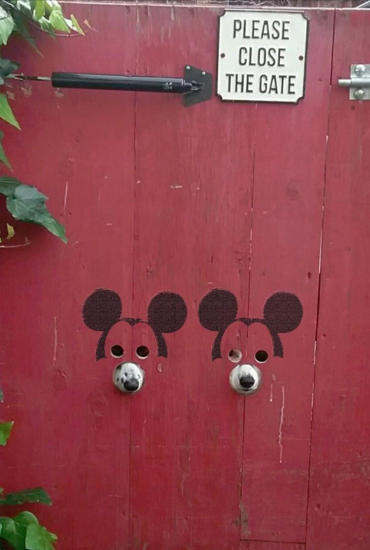 Art - PLEASE CLOSE THE GATE