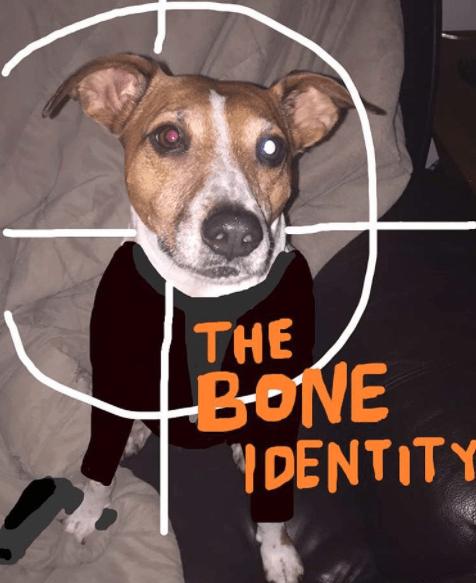 Dog - THE BONE YDENTITY