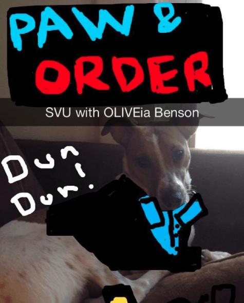 Font - PAW ORDER SVU with OLIVEia Benson Dun Don'