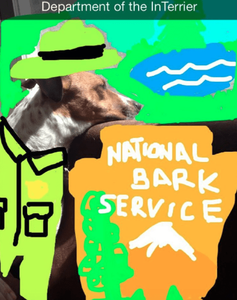 Canidae - Department of the InTerrier NATIONAL BARK SERVICE