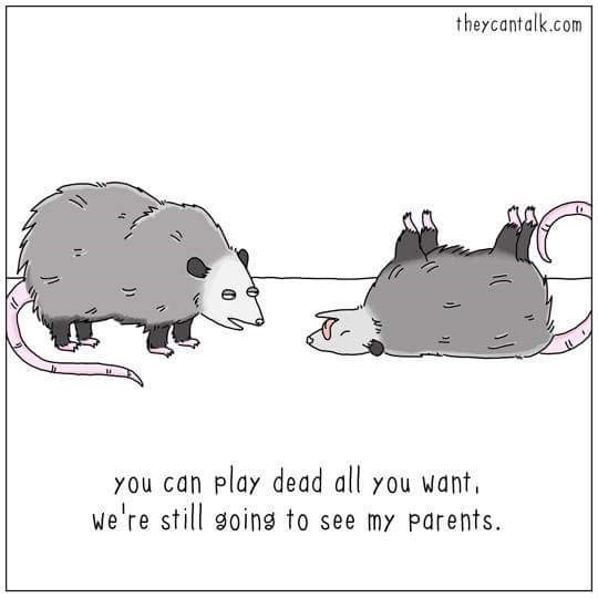 wombat - theycantalk.com you can play dead all you want, we're still going to see my parents
