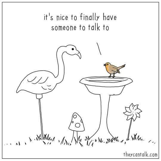 Bird - it's nice to finally have someone to talk to theycantalk.com