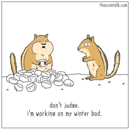 Cartoon - theycantalk.com don't judge i'm working on my winter bod. 0