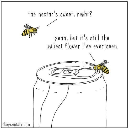 Insect - the nectar's sweet, risht? yeah, but it's still the usliest flower i've ever seen. |theycantalk.com