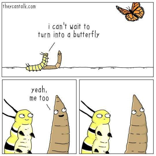 Cartoon - theycantalk.com i can't wait to turn into a butterfly yeah, me too