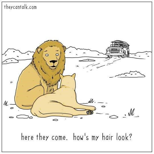 Cartoon - theycantalk.com here they come. how's my hair look?