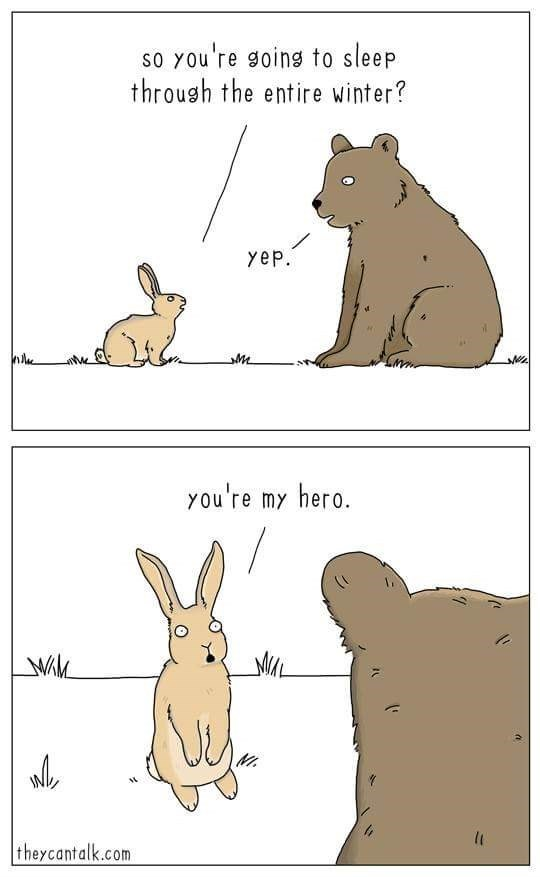 Hare - So you're going to sleep through the entire winter? yep. you're my hero. theycantalk.com