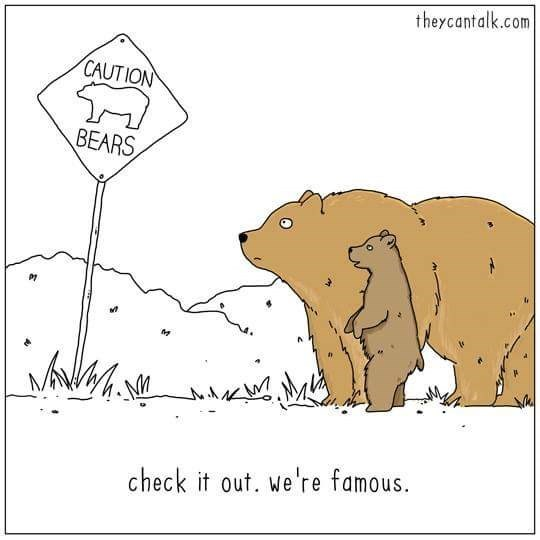 Text - theycantalk.com CAUTION BEARS check it out. we're famous.