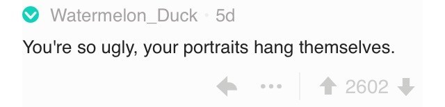 insults - Text - Watermelon_Duck 5d You're so ugly, your portraits hang themselves. 2602