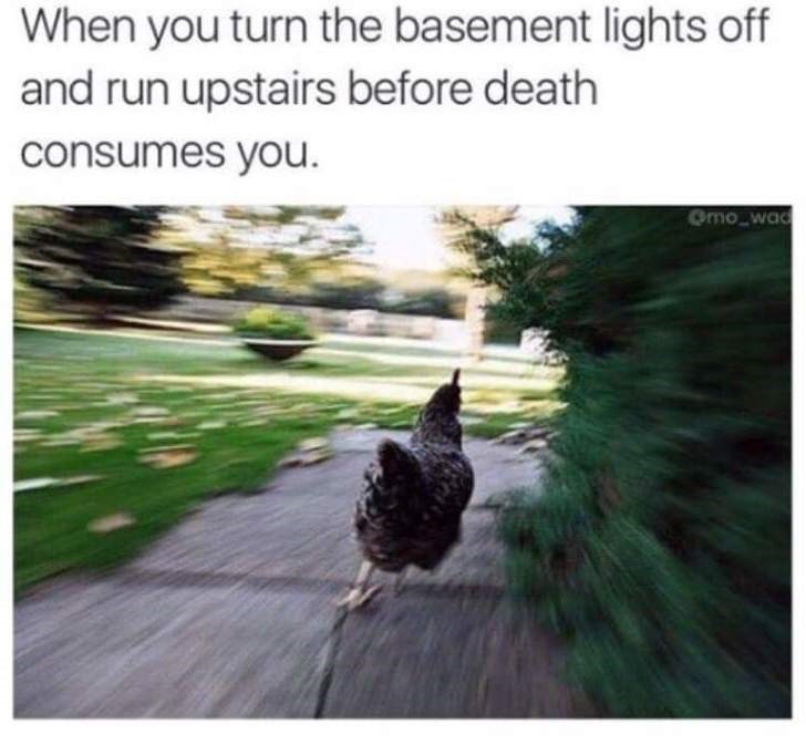 Nature - When you turn the basement lights off and run upstairs before death consumes you. Omo wa