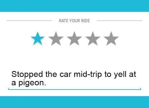 Text - RATE YOUR RIDE Stopped the car mid-trip to yell at a pigeon