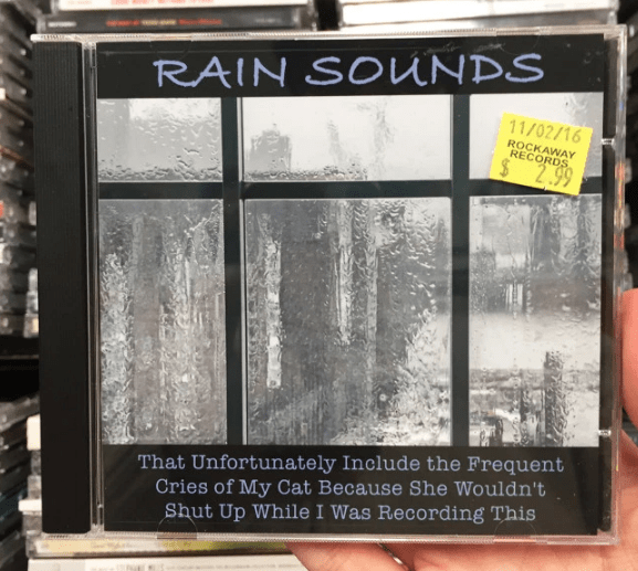 Window - RAIN SOUNDS 11/02/16 ROCKAWAY RECORDS 2.99 That Unfortunately Include the Frequent Cries of My Cat Because She Wouldn't Shut Up While I Was Recording This