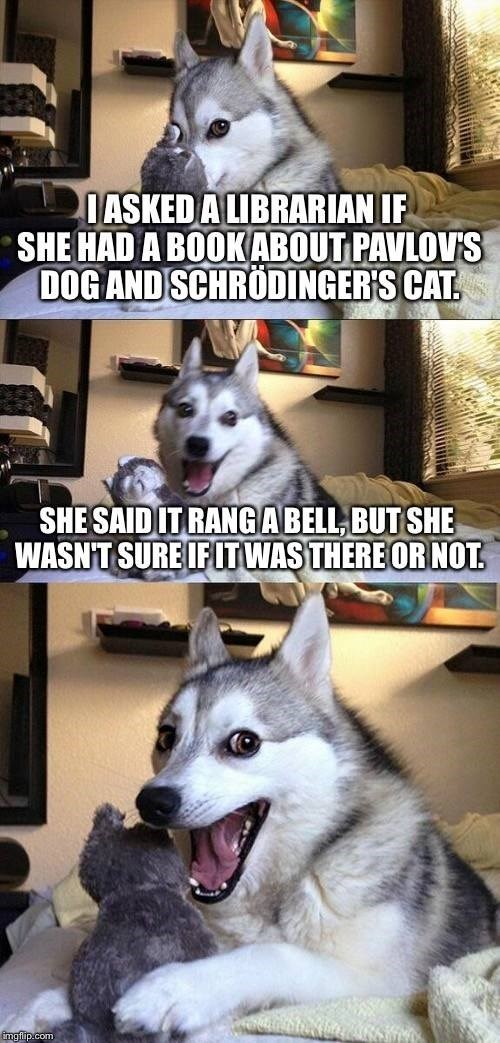 cute dog making bad puns about Pavlov and Schrodinger