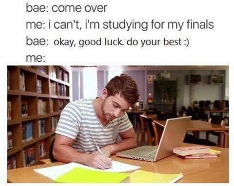 anti meme about studying for your finals