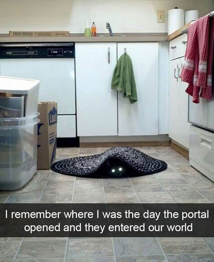 snapchat - Floor - FRET PZZA I remember where I was the day the portal opened and they entered our world