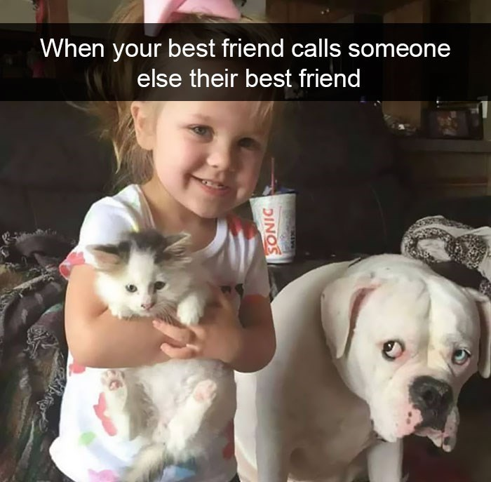snapchat - Dog - When your best friend calls someone else their best friend DINOS