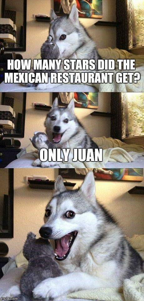 work meme - Mammal - HOW MANY STARS DID THE MEXICAN RESTAURANT GET? ONLY JUAN imgfip.com