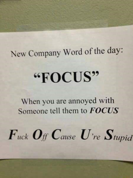 """work meme - Text - New Company Word of the day: """"FOCUS"""" When you are annoyed with Someone tell them to FOCUS Fuck Off Cause U re Stupid"""