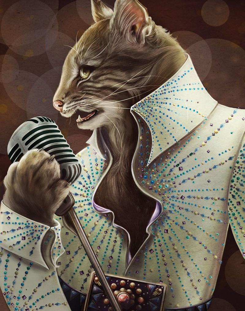 Elegant Cat - Cat - aa o v c a eee e e