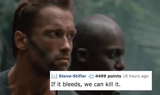 Face - (-1 Steve-Stifler 4499 points 18 hours ago If it bleeds, we can kill it.