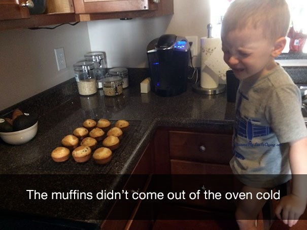 Food - Cng o The muffins didn't come out of the oven cold