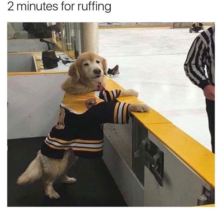 Yellow - 2 minutes for ruffing