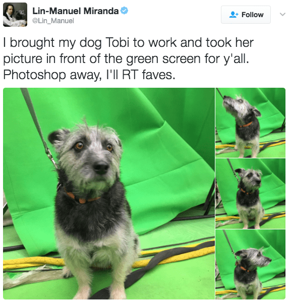 Mammal - Lin-Manuel Miranda Follow @Lin_Manuel I brought my dog Tobi to work and took her picture in front of the green screen for y'all. Photoshop away, I'll RT faves.