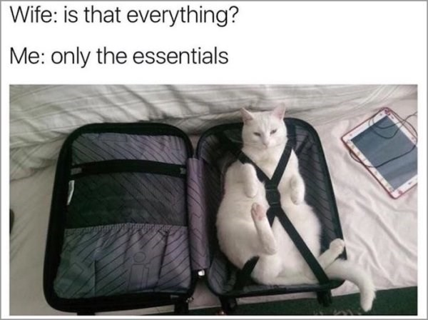 Bag - Wife: is that everything? Me: only the essentials