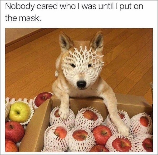 Canidae - Nobody cared who l was until I put on the mask.